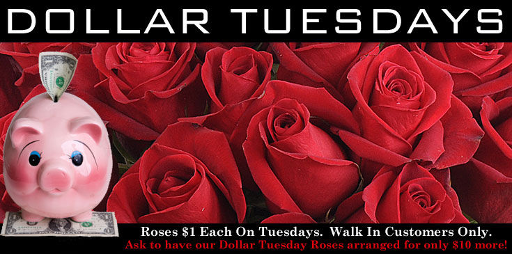 DollarTuesday4 -