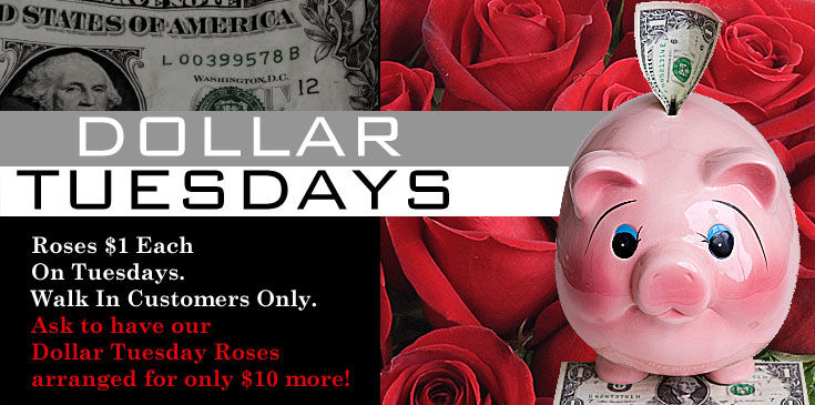 DollarTuesday5 -