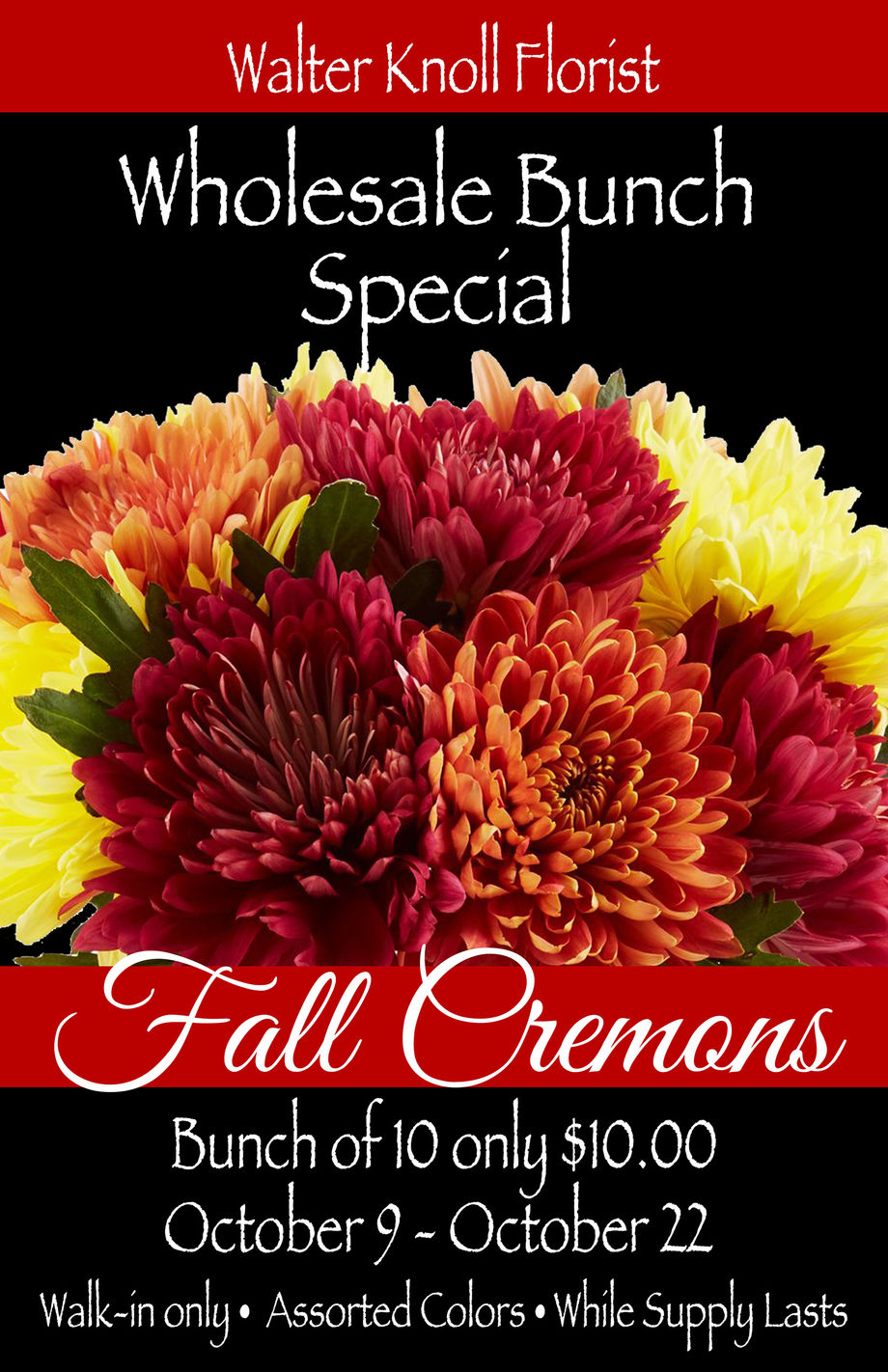 Fall Cremons Bunch Special Walter Knoll Florist